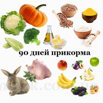 Подробный список продуктов первого прикорма для малышей нашего региона на 90 дней: